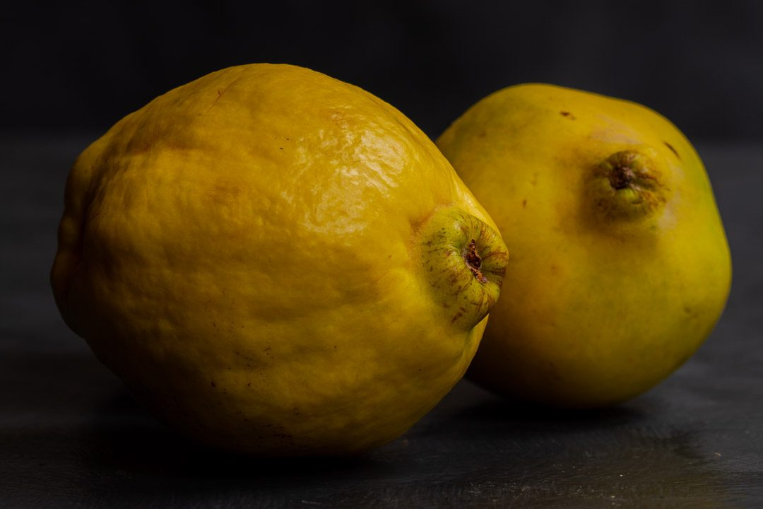 Making Vintage Quince Cordial with 2 quinces on a grey background