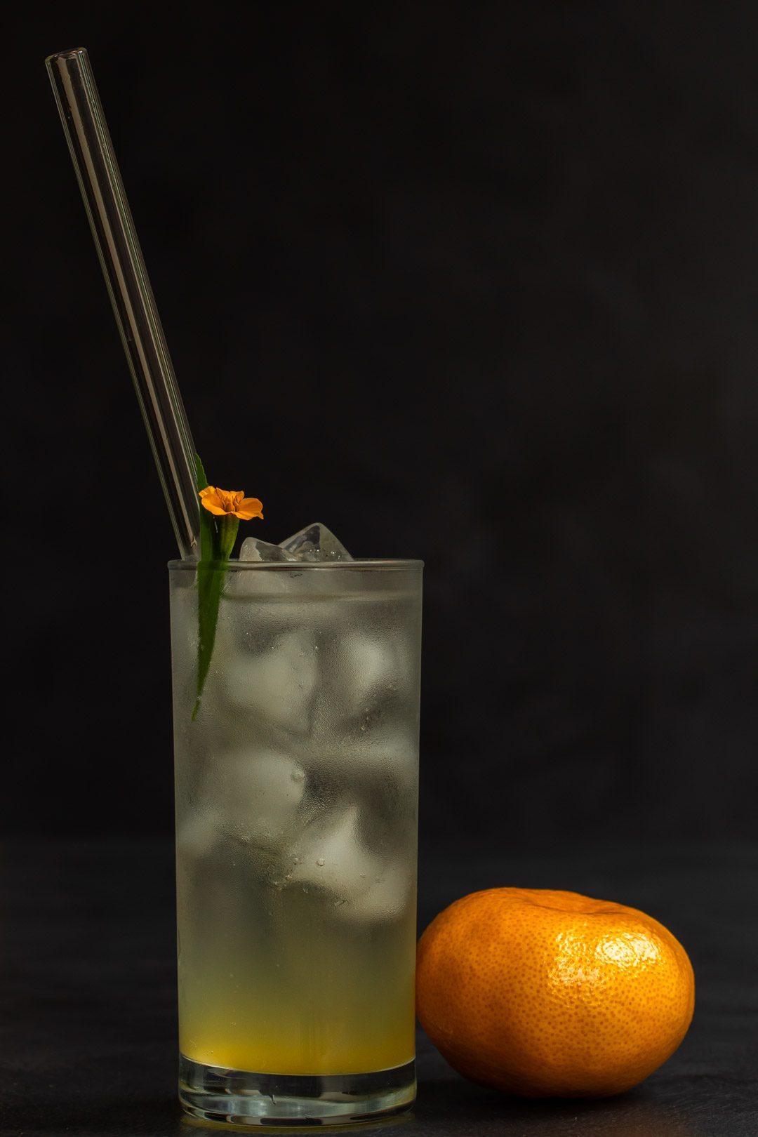 Mandarin tarragon shrub syrup drinking vinegar with mandarin in foreground