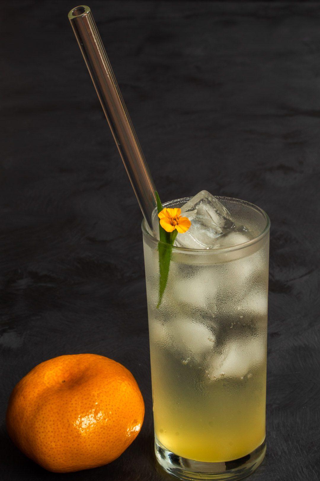 Mandarin tarragon shrub syrup drinking vinegar with mandarin in foreground from 45 degrees