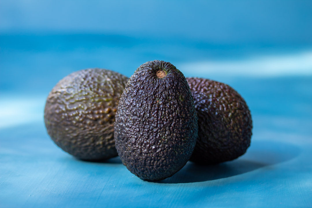 avocados still life
