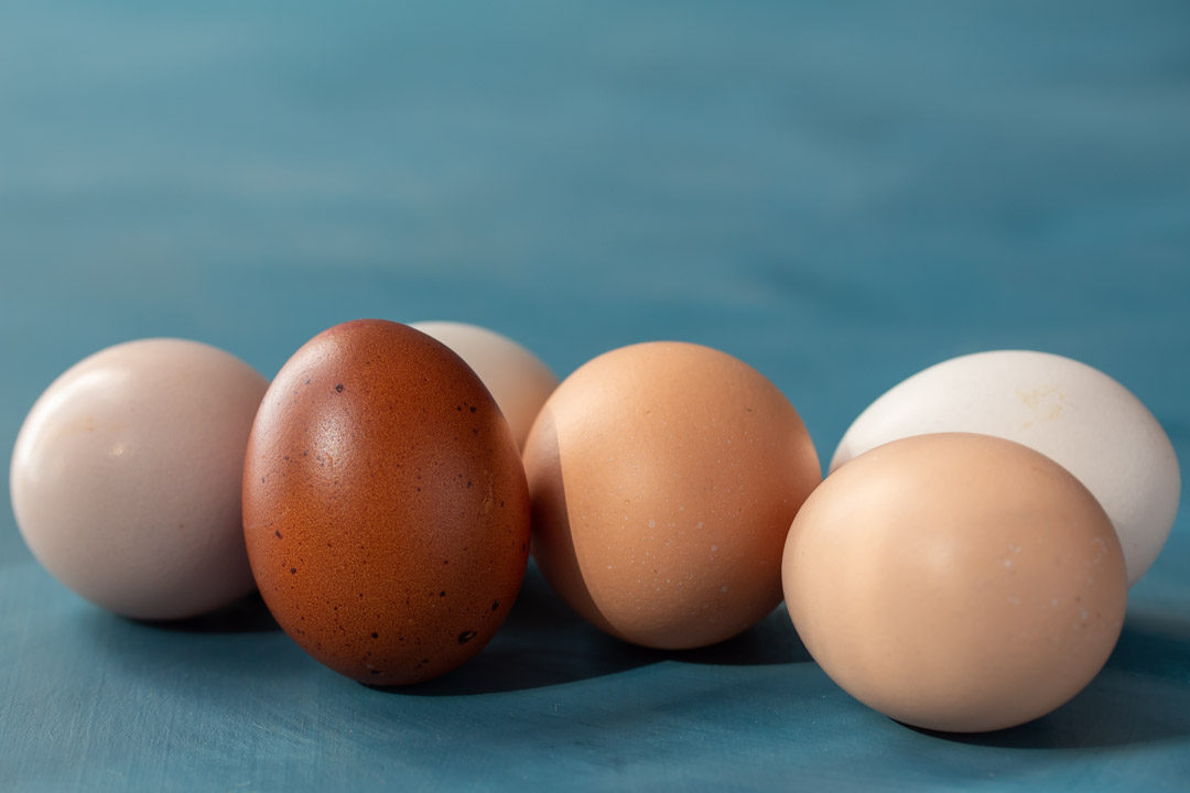 organic eggs group