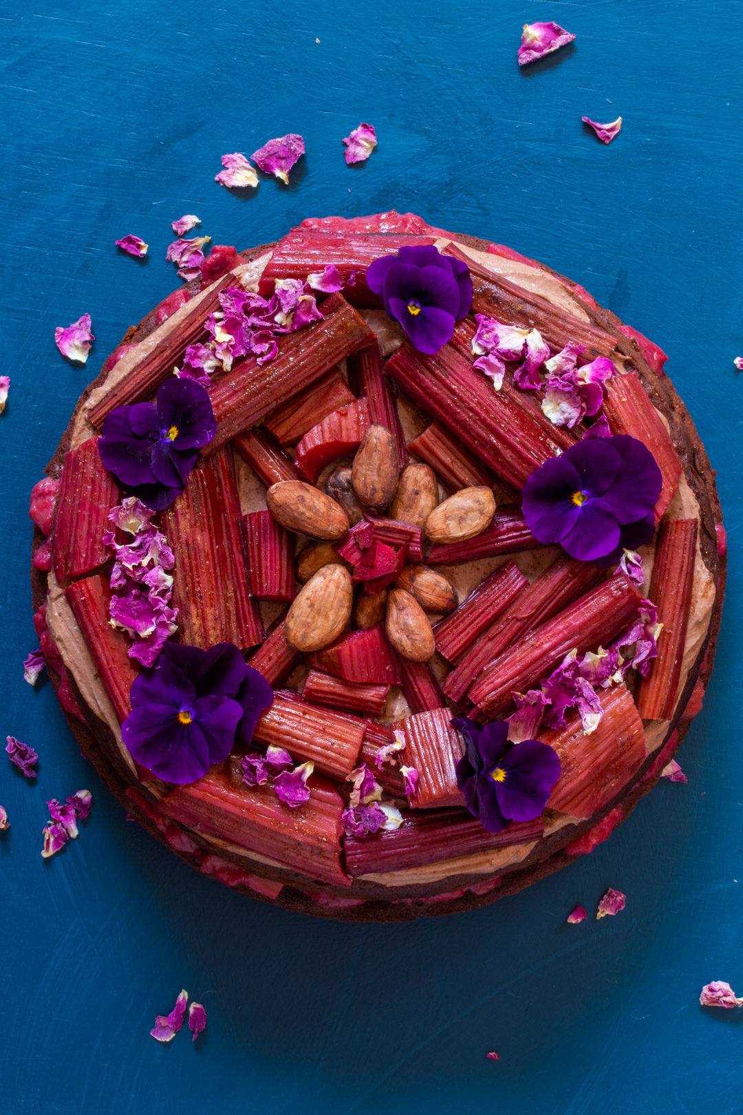 rhubarb cacao spice cake from above