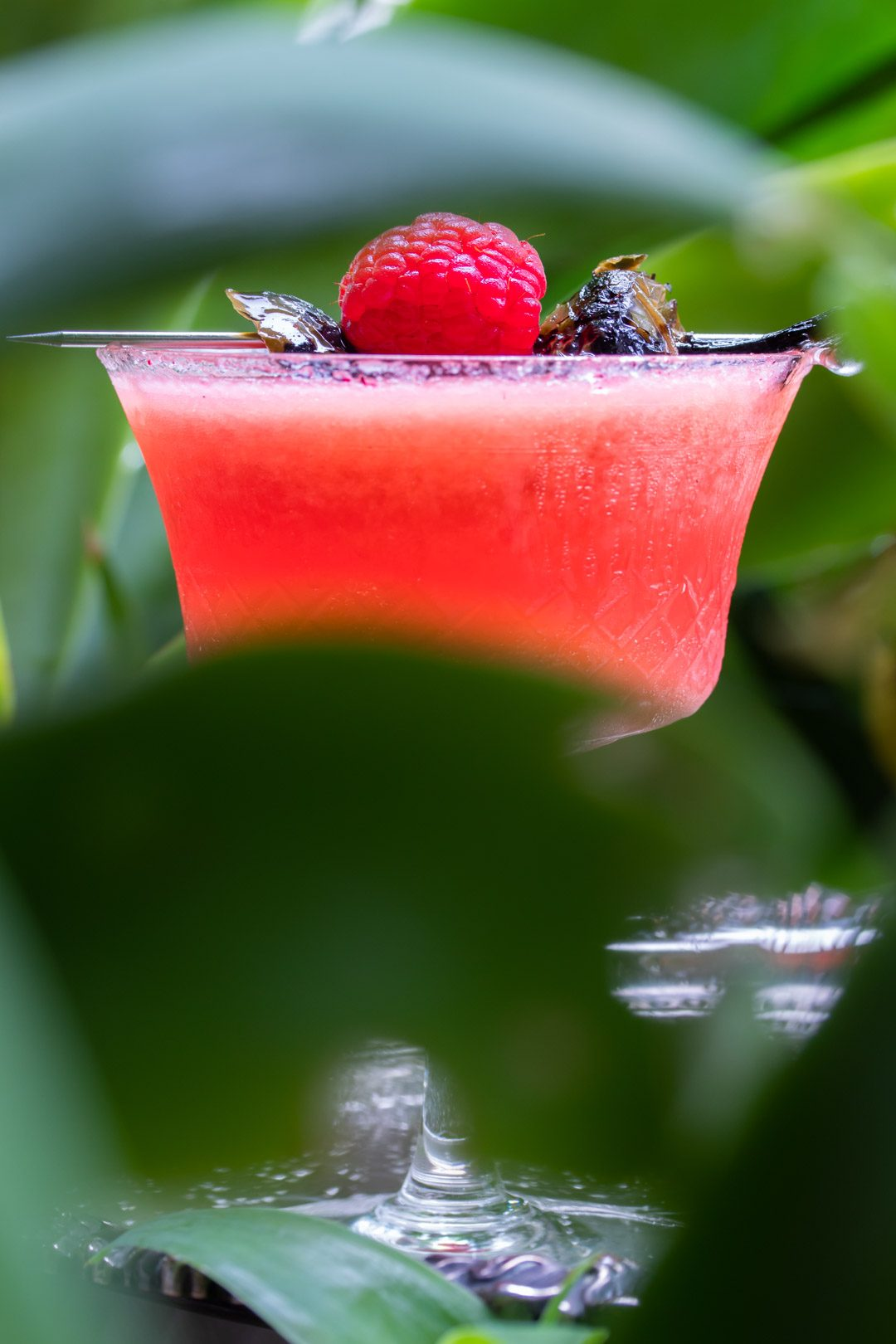 Pickled jalapeno and raspberry margarita cocktail with hibiscus sugar: with agave frame
