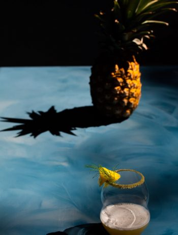 pineapple fennel shrub margarita cocktail with pineapple and shadow