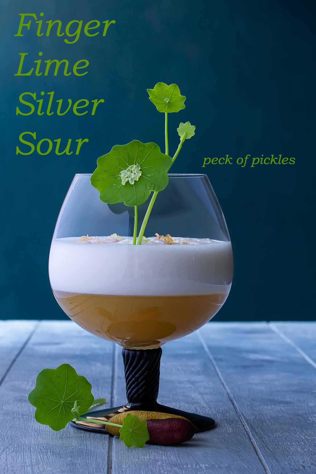 finger lime silver sour cocktail with finger lime caviar and nasturtium leaf garnish