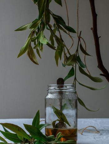 lemon myrtle honey syrup framed by suspended lemon myrtle leaves