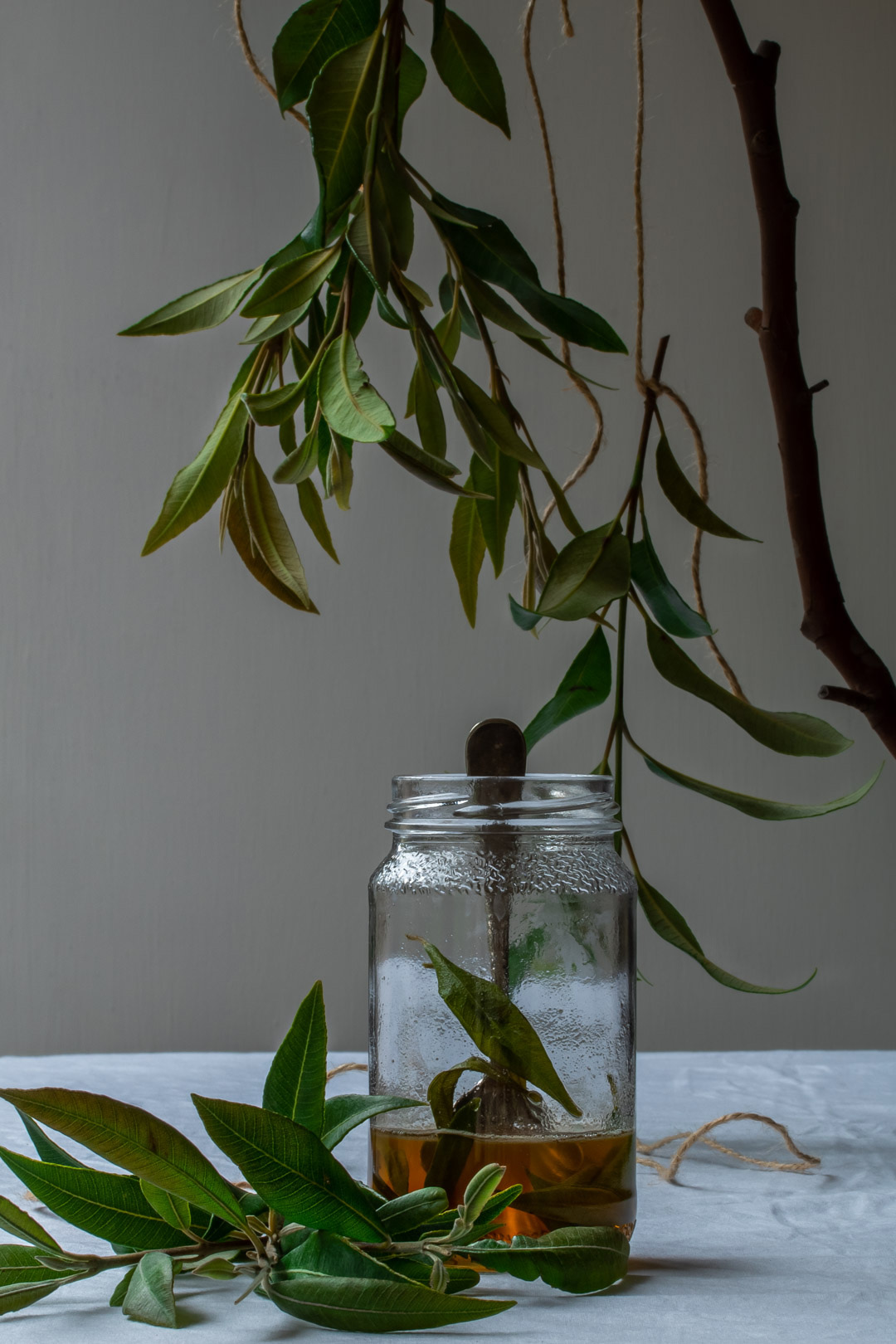 lemon myrtle honey syrup framed by suspended lemon myrtle leaves