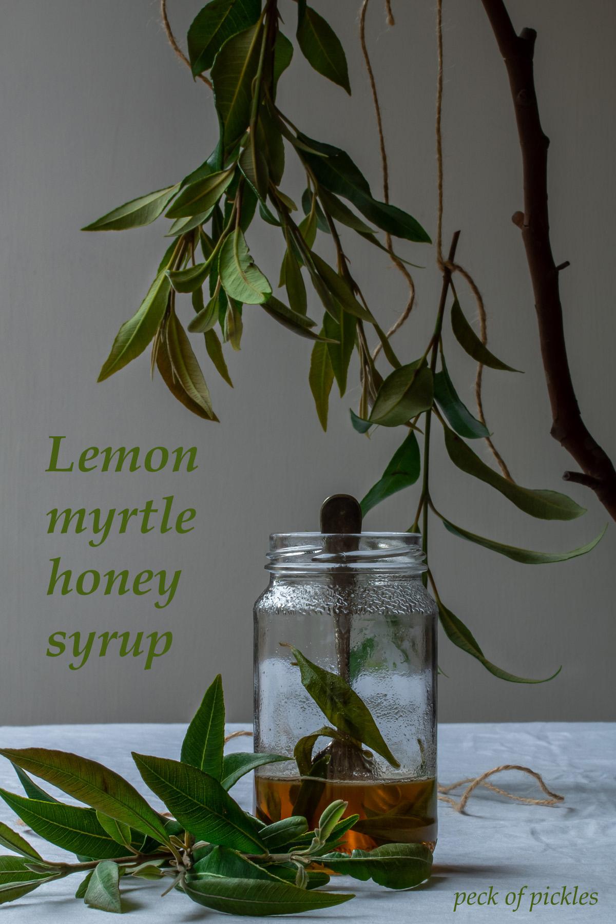 lemon myrtle honey syrup in glass jar with vintage spoon framed by suspended lemon myrtle leaves